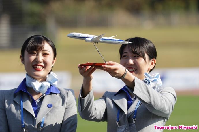 ANA機モデルプレーン
